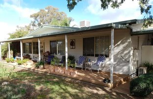 Picture of 50 Airport street, Temora NSW 2666