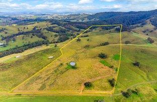 Picture of 355 Hanleys Creek Road, Tabbil Creek Via, Dungog NSW 2420