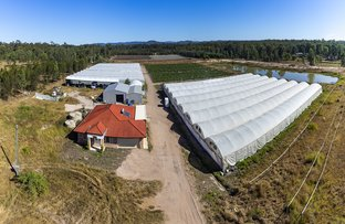 Picture of 5 Jamieson Rd, Churchable QLD 4311