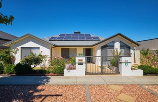 Picture of 26 Mary  Gillespie Avenue, Gungahlin ACT 2912