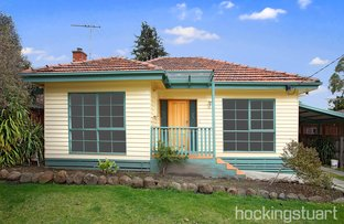 16 Wickham Avenue, Forest Hill VIC 3131