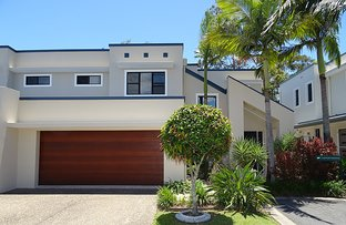 11/368 Pine Ridge Rd, Coombabah QLD 4216