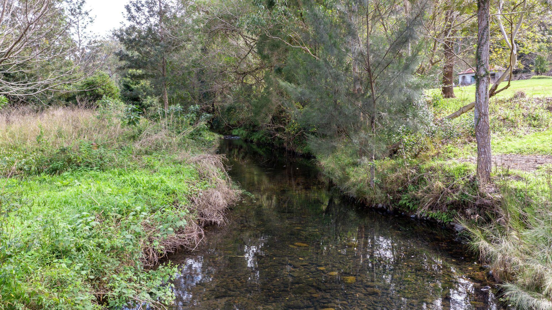 176 Terrace Creek Road, Terrace Creek NSW 2474, Image 2