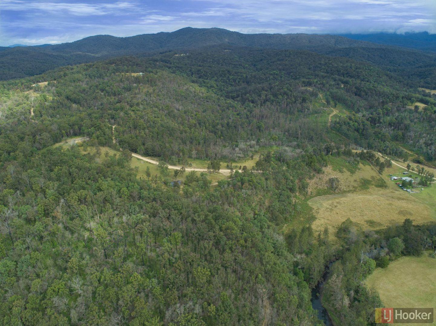 1100 Dungay Creek Road, Wittitrin NSW 2440, Image 2