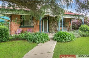 Picture of 29 Macbean St, Culcairn NSW 2660