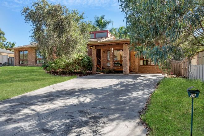 Picture of 14 Lulworth Place, FLAGSTAFF HILL SA 5159