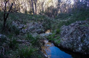 Picture of 1261 Ten Mile Road, Deepwater NSW 2371