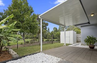 Picture of 30 Ribbonwood Street, Sippy Downs QLD 4556