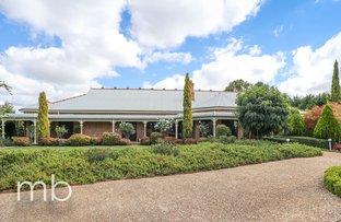 Picture of 557 Cecil Road, Orange NSW 2800