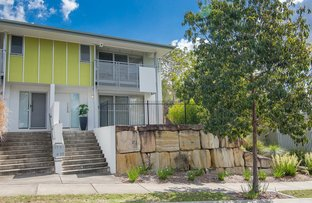 Picture of 17 Melaleuca Drive, Brookwater QLD 4300