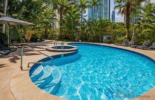 41/2981 Gold Coast Hwy, Surfers Paradise QLD 4217