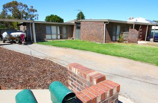 Picture of 36 Sandwych Street, Wentworth NSW 2648