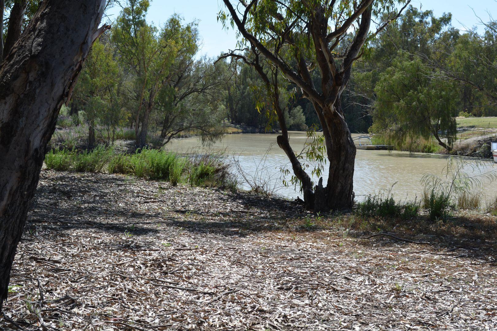 9 Cudmore Road, Wentworth NSW 2648, Image 2
