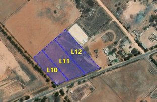 Picture of Lot 10-12 Cocata Road, Wudinna SA 5652