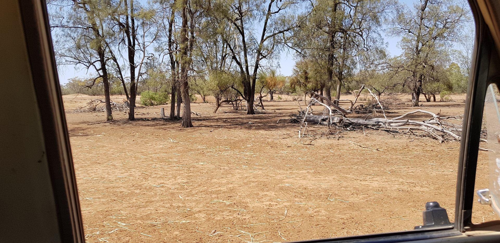 1691 Gundabloui Road, Collarenebri NSW 2833, Image 1