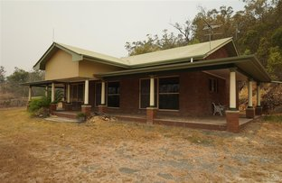 Picture of 1199 Midge Point Road, Midge Point QLD 4799