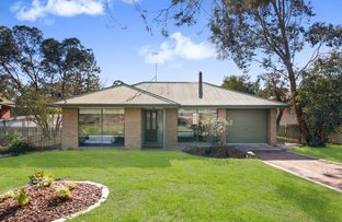 Picture of 14 Strickland Street, Ascot VIC 3551