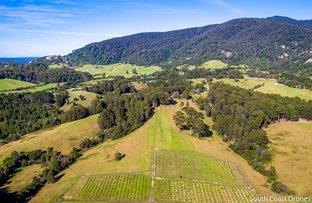 Picture of 302-336 Punkalla-Tilba Road, Central Tilba NSW 2546