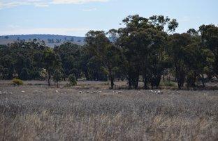 Warrawong 1678 Merrygoen Road, Neilrex NSW 2831