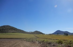 Picture of Mount Martin QLD 4754