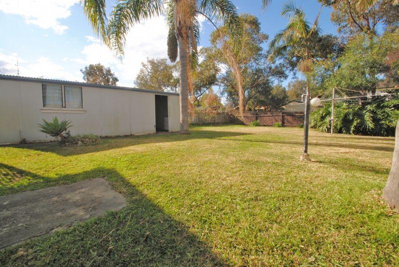 29 Delia Avenue, Budgewoi NSW 2262, Image 6