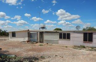 WLL 15024 Holden's Field, Lightning Ridge NSW 2834
