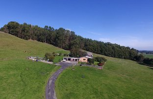 Picture of 1549 Trowutta Road, Edith Creek TAS 7330