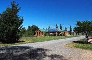 Picture of 151 Nanami Lane, Orange NSW 2800