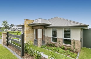 Picture of 84  Olive Hill Drive, Cobbitty NSW 2570