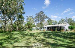 Picture of 46 La Spina Road, Mareeba QLD 4880