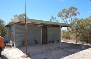 Picture of WLL 14559 Deep Four Mile, Lightning Ridge NSW 2834