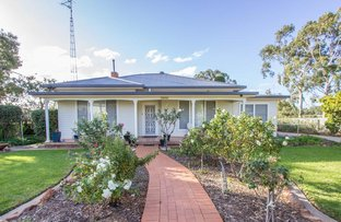 Picture of 95 Pine Hill Road, Narrandera NSW 2700