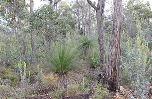 Picture of 1815 Wedgetail Circle, Parkerville WA 6081