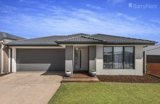 18 Seagrass Street, Leopold VIC 3224