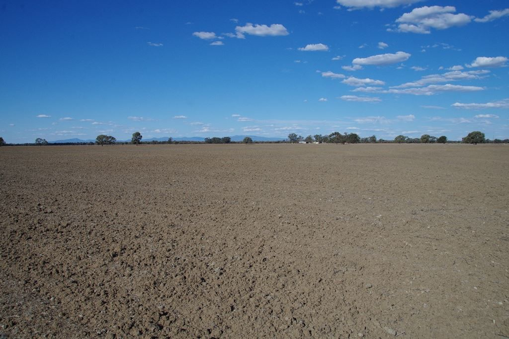 497 Nuable Road, Narrabri NSW 2390, Image 2