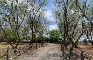 Picture of 23 Siratro Court, Veresdale Scrub QLD 4285