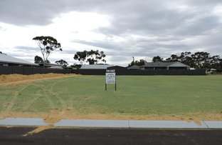 Picture of Lot 2012 Carnaby Place, Moora WA 6510