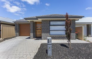 Picture of 36 Cook Street, Seaford Meadows SA 5169