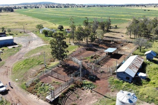 Picture of 2463 ACRES CATTLE & CULTIVATION, JANDOWAE QLD 4410