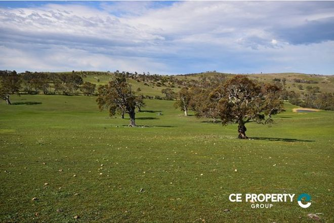 Picture of Lot 3 Angas Valley Road, MOUNT PLEASANT SA 5235