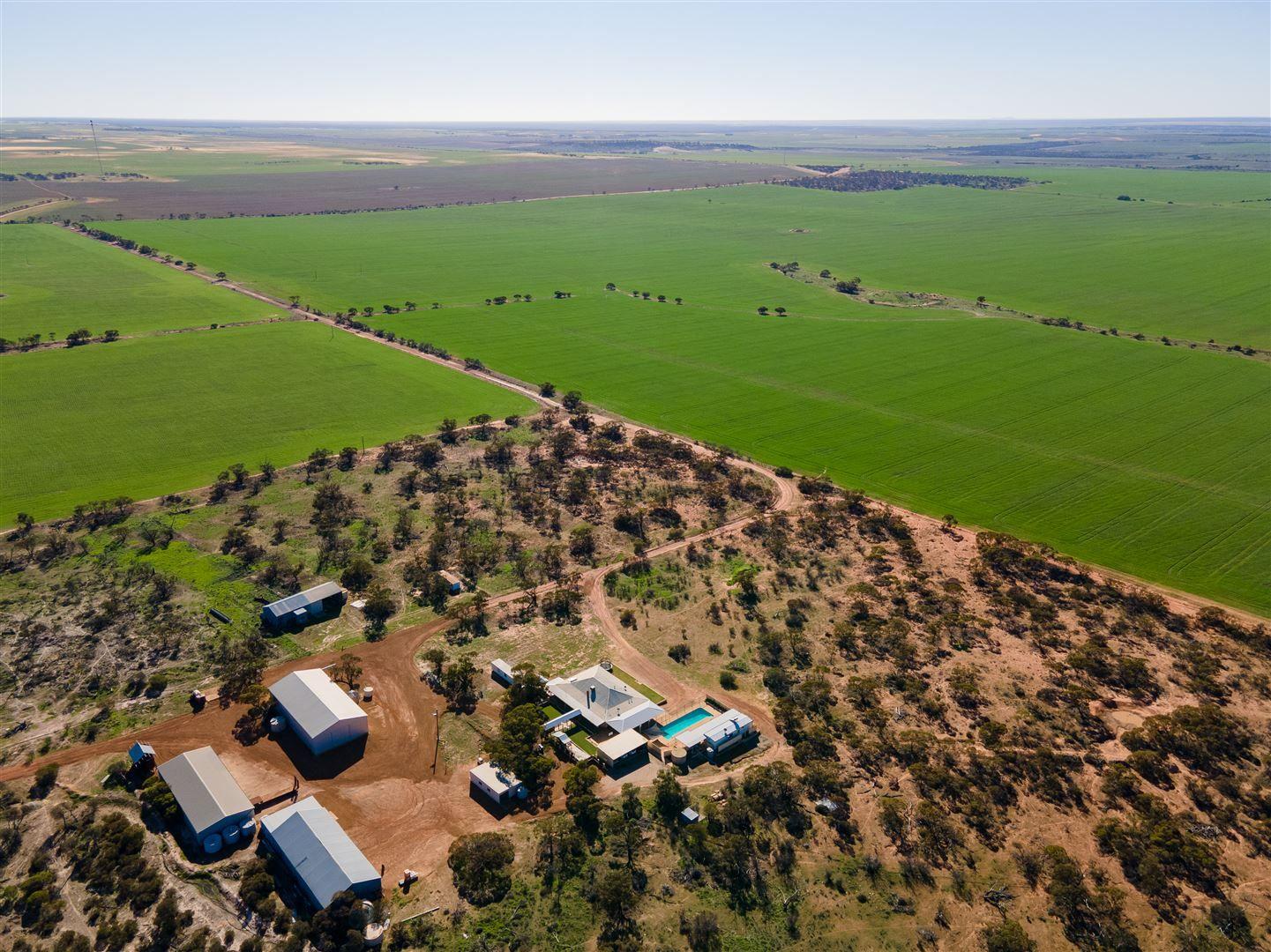 Gurrady Farms, Yuna WA 6532, Image 0
