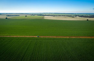 Picture of 3421 Goldfields Way, Sebastopol NSW 2666
