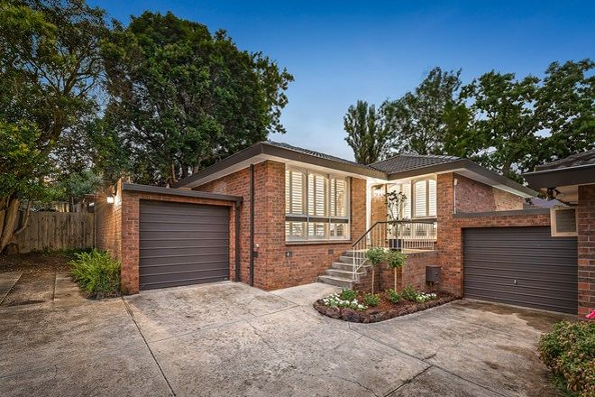 Picture of 4/70 Essex Road, SURREY HILLS VIC 3127