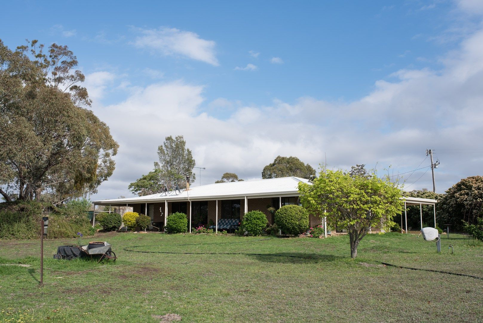 Peak Hill Road, Dubbo NSW 2830, Image 0