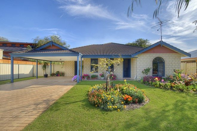 Picture of 20 Cardinal Crescent, BUSSELTON WA 6280