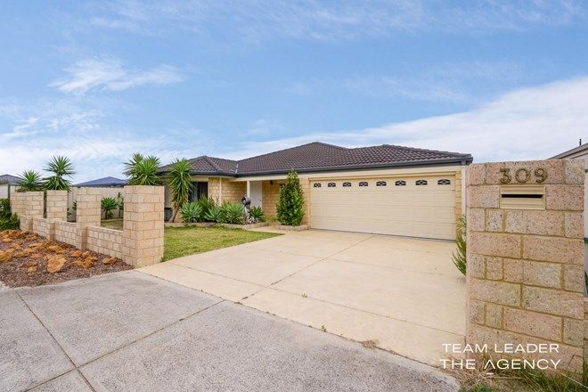 Picture of 309 Westfield Road, SEVILLE GROVE WA 6112