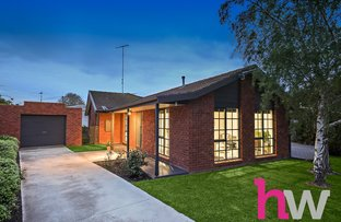 Picture of 7 Poplar Court, Belmont VIC 3216