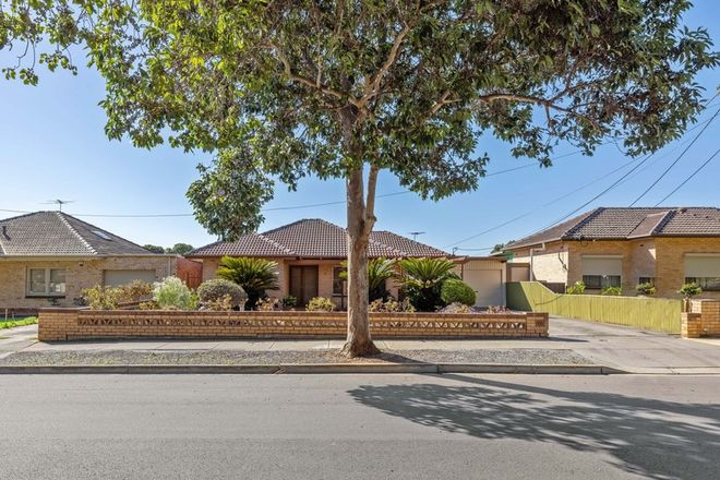 Picture of 8 Janet Avenue, GLYNDE SA 5070