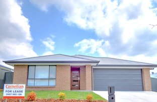 Picture of 156 Radford St, Cliftleigh NSW 2321