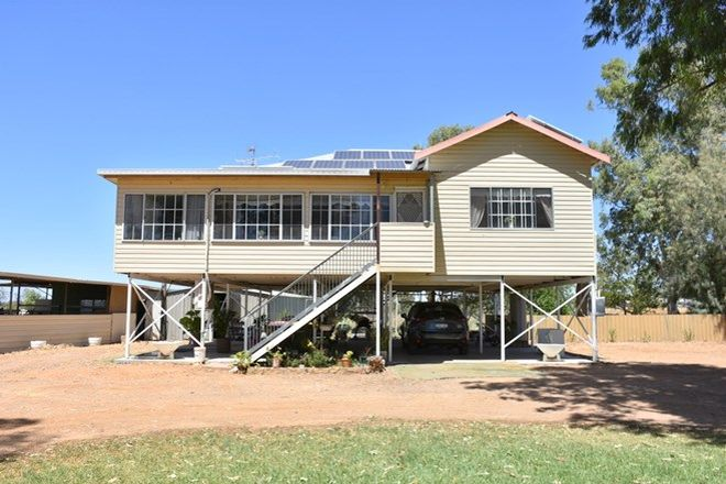 Picture of 36 Alabar Road, MOREE NSW 2400